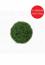 Boxwood Ball  25cm Dia( Dia 20, 25, 35, 50cm ) 4 sizes